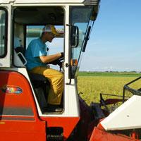 あきよしファームの農業研修プログラム